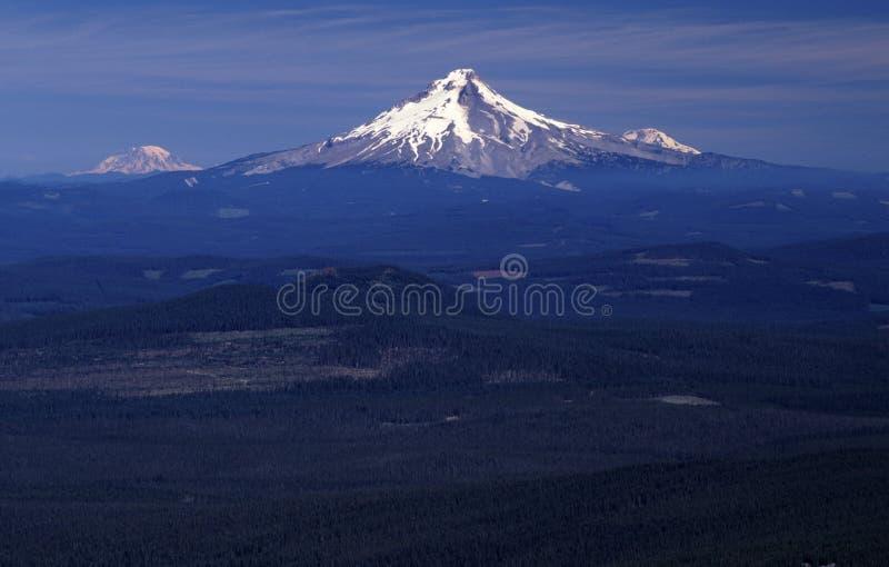Ritratti dell'Oregon fotografie stock libere da diritti