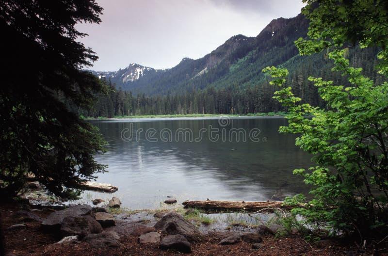 Ritratti dell'Oregon immagine stock libera da diritti