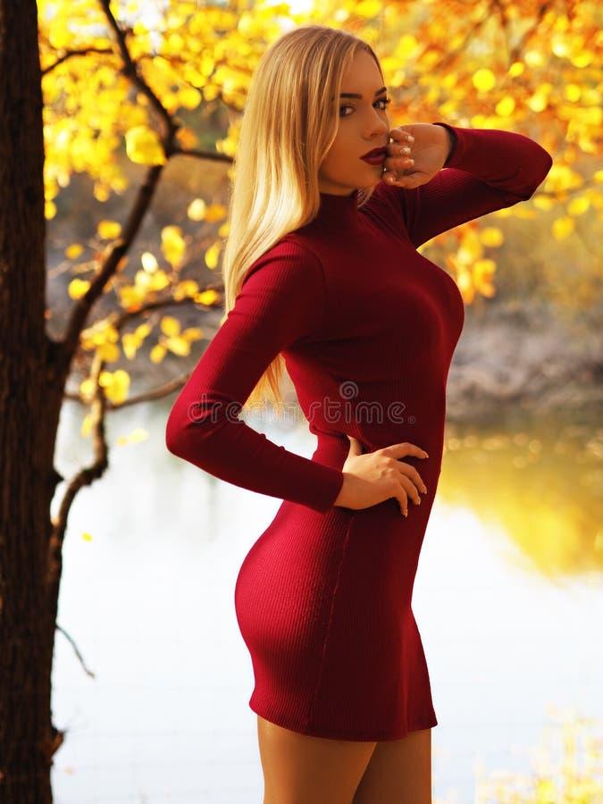 Ritratto biondo della ragazza alla foresta di autunno che esamina macchina fotografica immagine stock