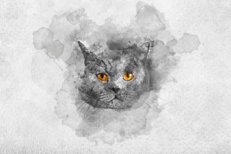 Ritratto britannico sveglio dell'acquerello del ` s del gatto dello shorthair illustrazione vettoriale