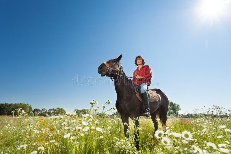 Ritratto a cavallo del cavaliere felice nel campo fiorito fotografia stock
