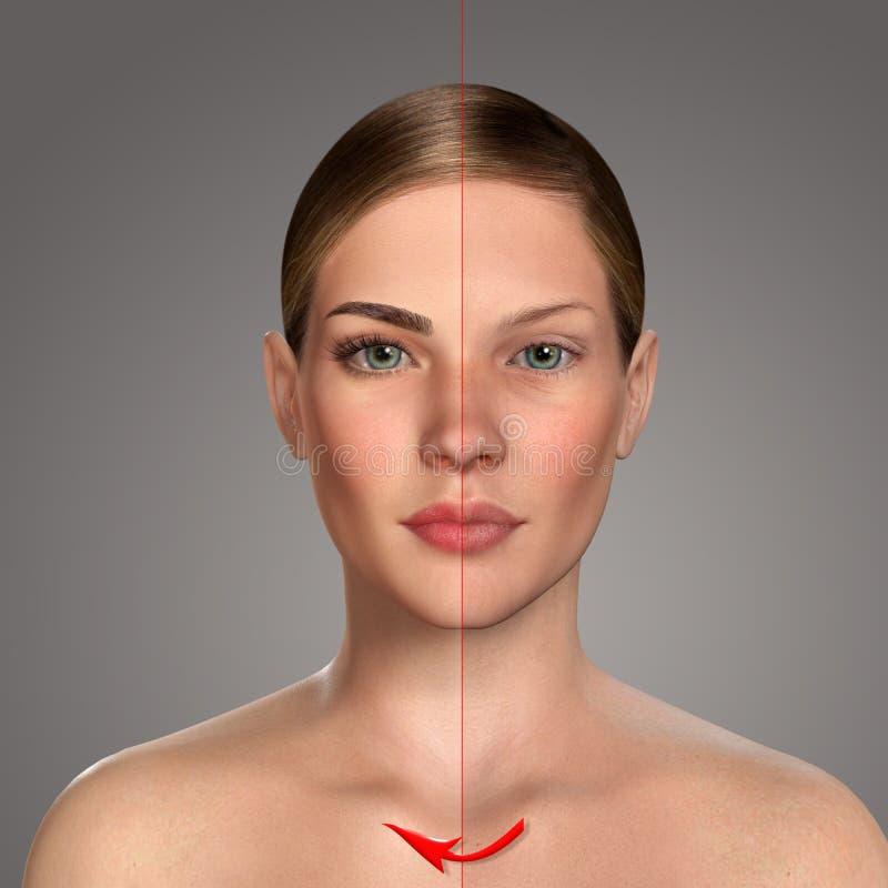 ritratto comparativo 3d delle donne con e senza trucco illustrazione di stock