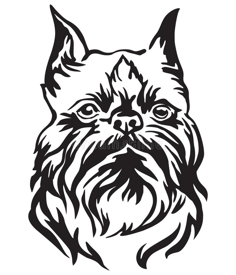 Ritratto decorativo dell'illustrazione di vettore di grifone di Bruxelles del cane royalty illustrazione gratis