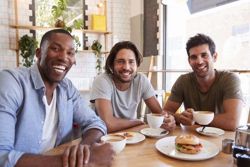 Ritratto degli amici maschii che si incontrano per il pranzo in caffetteria fotografia stock