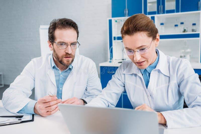 ritratto degli scienziati in cappotti ed occhiali del laboratorio che lavorano insieme al computer portatile nel luogo di lavoro fotografie stock libere da diritti