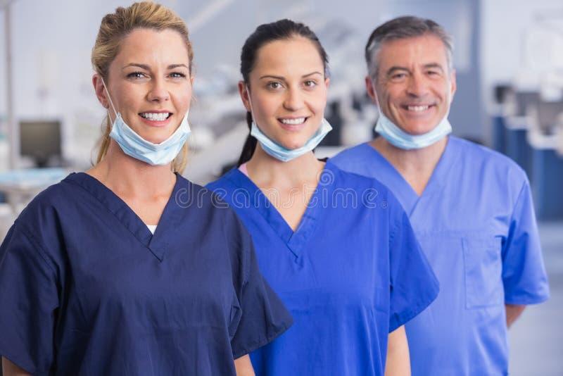 Ritratto dei colleghe sorridenti che stanno in una linea fotografia stock