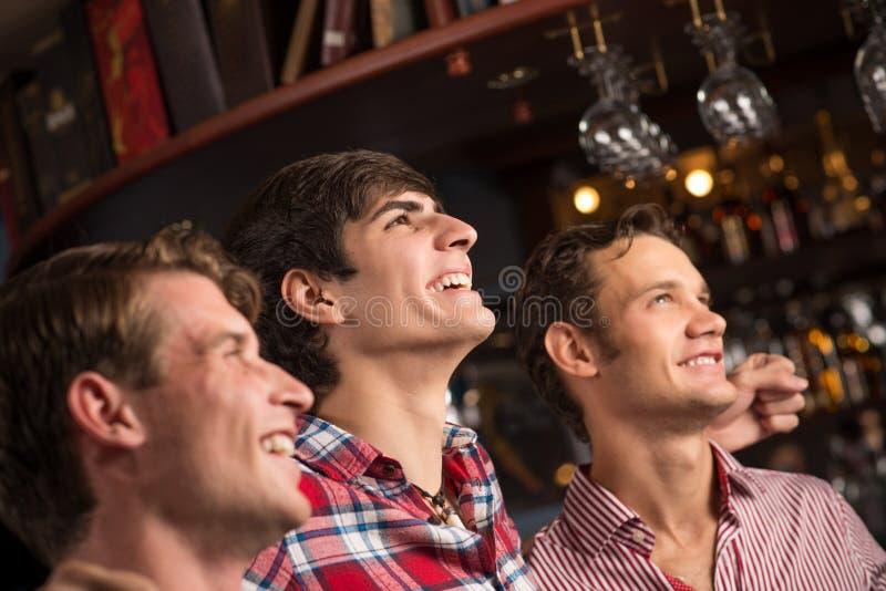 Ritratto dei fan nella barra immagine stock libera da diritti