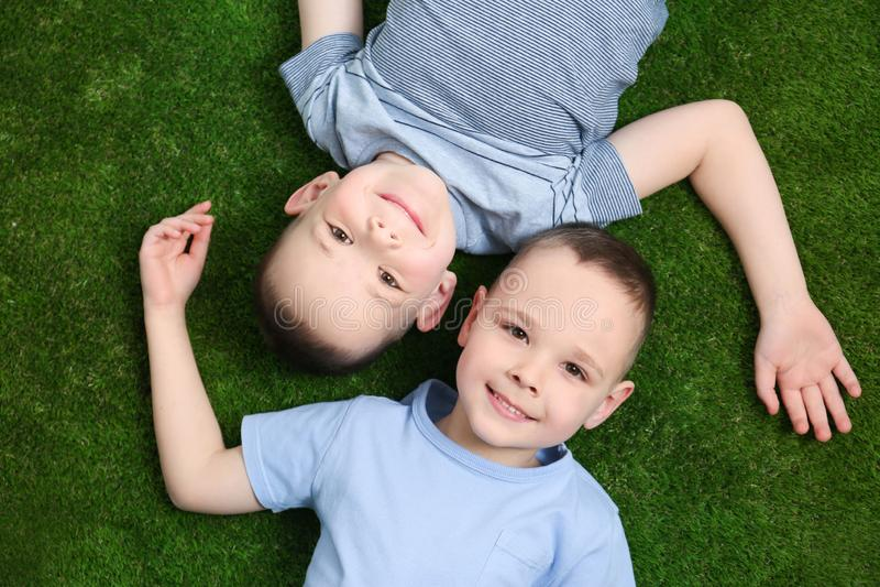 Ritratto dei fratelli gemelli svegli su erba verde fotografia stock libera da diritti