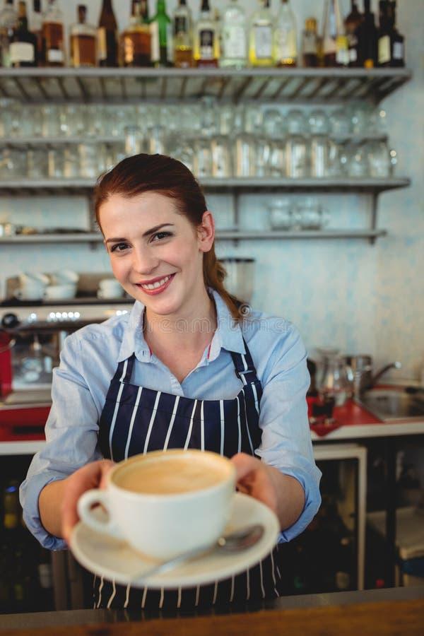 Ritratto del caffè sicuro del servizio di barista al self-service fotografia stock libera da diritti
