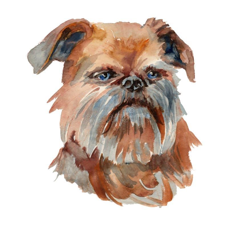 Ritratto del cane di Bruxelles Griffon royalty illustrazione gratis