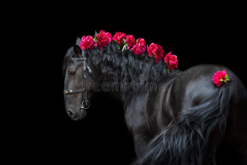 Ritratto del cavallo con i fiori fotografie stock
