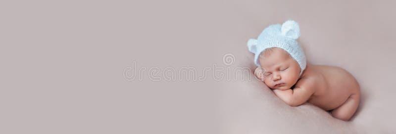 Ritratto del cofano d'uso dell'orso del neonato anziano sveglio da dieci giorni con le orecchie fotografia stock libera da diritti