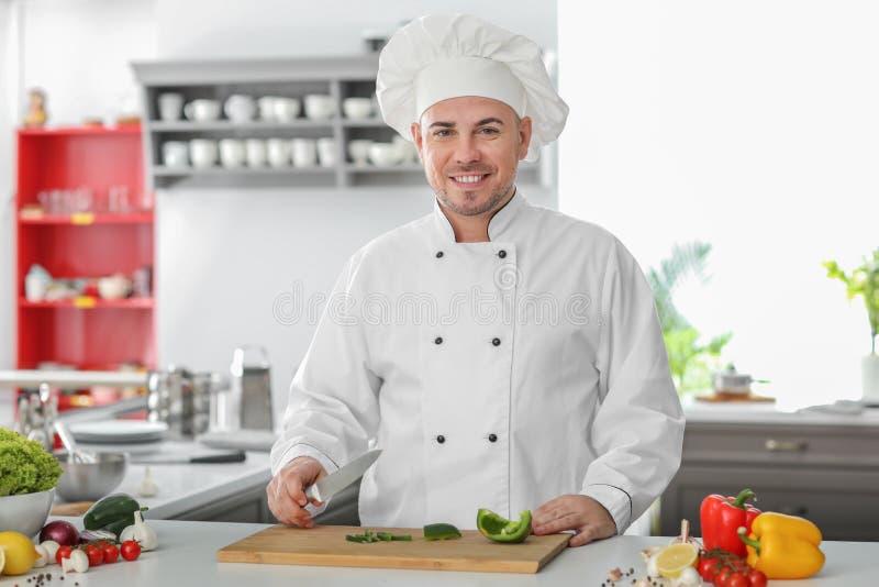 Ritratto del cuoco unico maschio In Kitchen fotografia stock libera da diritti