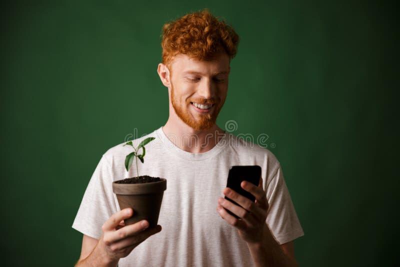 Ritratto del giovane barbuto sorridente della testarossa bella dei giovani, uff immagine stock