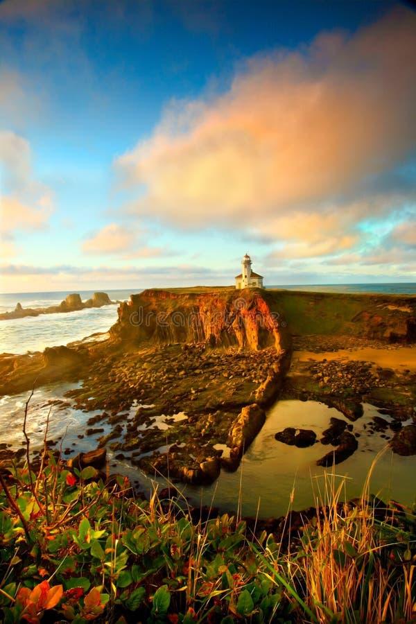 Ritratto del litorale dell'Oregon fotografie stock libere da diritti