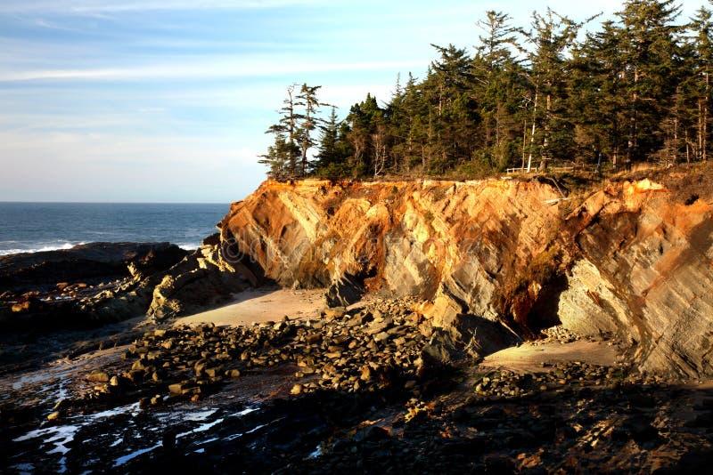Ritratto del litorale dell'Oregon fotografia stock libera da diritti
