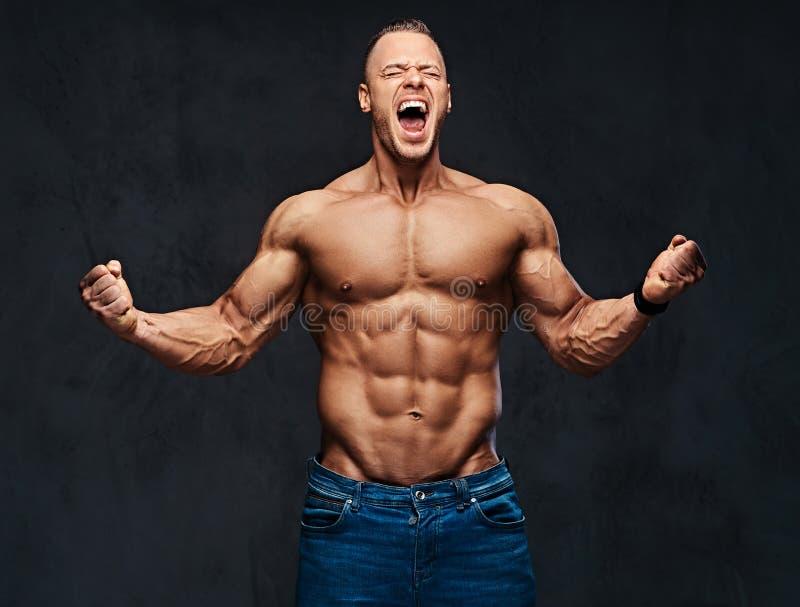 Ritratto del maschio muscolare senza camicia in jeans fotografia stock libera da diritti