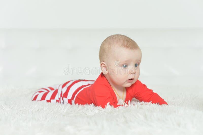 Ritratto del neonato adorabile su fondo fotografie stock