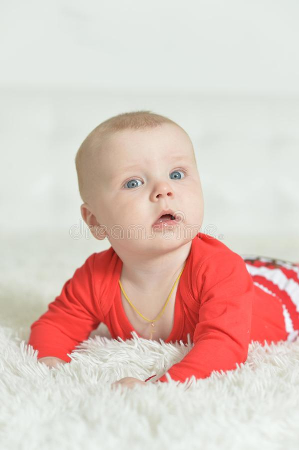 Ritratto del neonato adorabile sveglio su fondo immagine stock