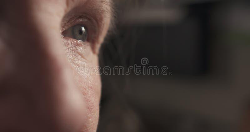 Ritratto del primo piano degli occhi della donna anziana fotografie stock libere da diritti