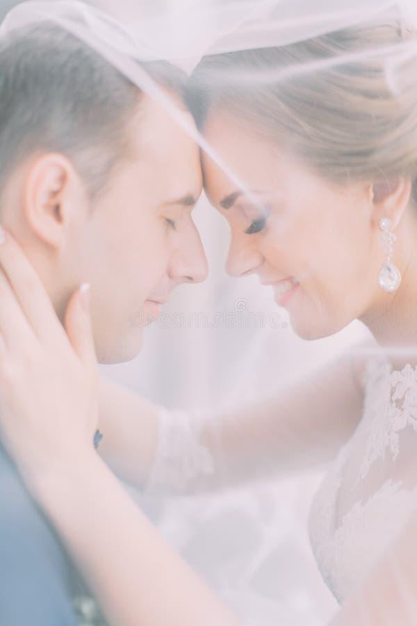 Ritratto del primo piano delle coppie sorridenti della persona appena sposata sotto il velo di nozze fotografia stock libera da diritti