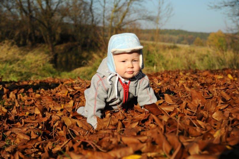 Ritratto del ragazzino felice che gioca con le foglie gialle di autunno al fondo naturale del parco di aria aperta fotografia stock libera da diritti