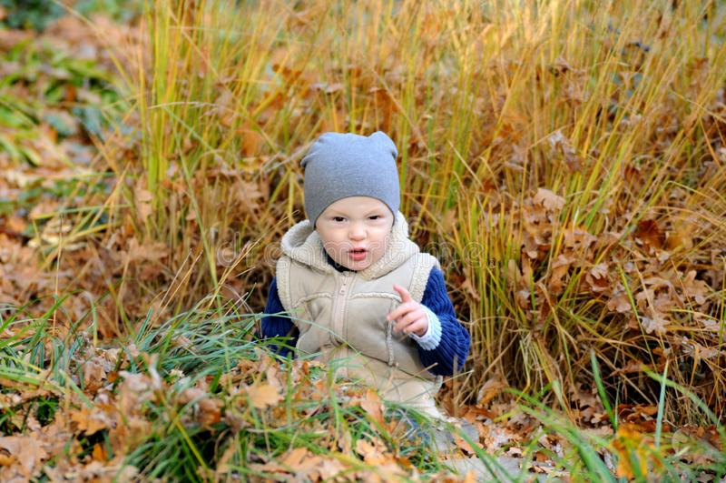 Ritratto del ragazzino felice che gioca con le foglie gialle di autunno al parco naturale fotografie stock