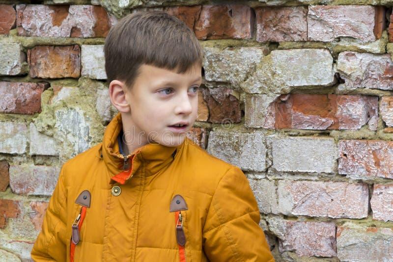 Ritratto del ragazzino in rivestimento che posa sopra il fondo del muro di mattoni immagini stock
