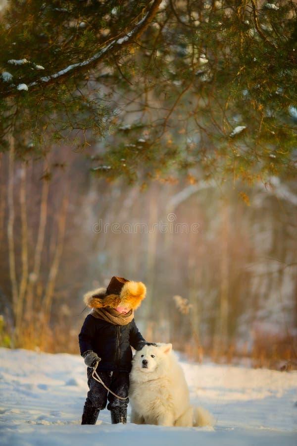 Ritratto del ragazzo di inverno con il cane samoiedo immagini stock libere da diritti