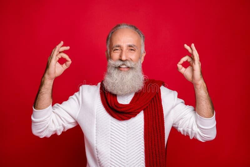 Ritratto del suo bel contenuto allegro e allegro, allegro, dai capelli grigi, che mostra due doppi annunci a premi fotografia stock