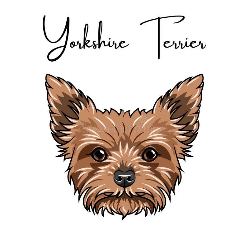 Ritratto del terrier di Yorkshire Animale sveglio Razza del cane Vettore illustrazione di stock