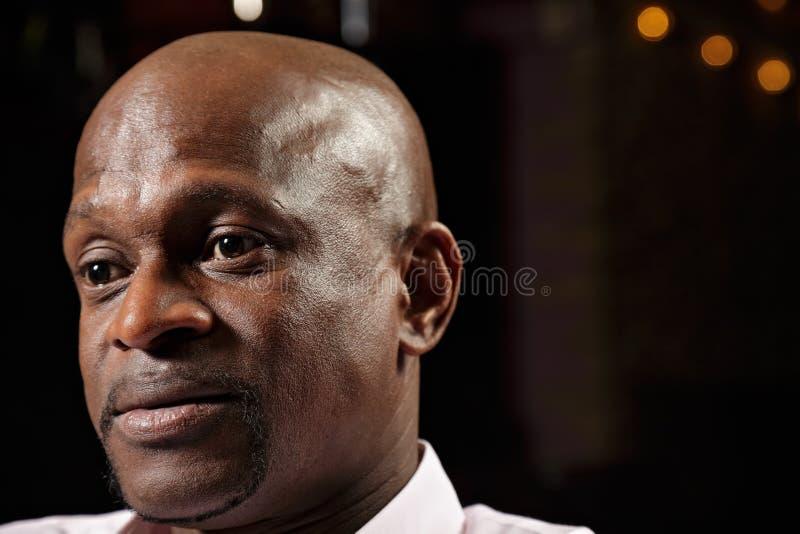 Ritratto del tirante africano fotografie stock libere da diritti