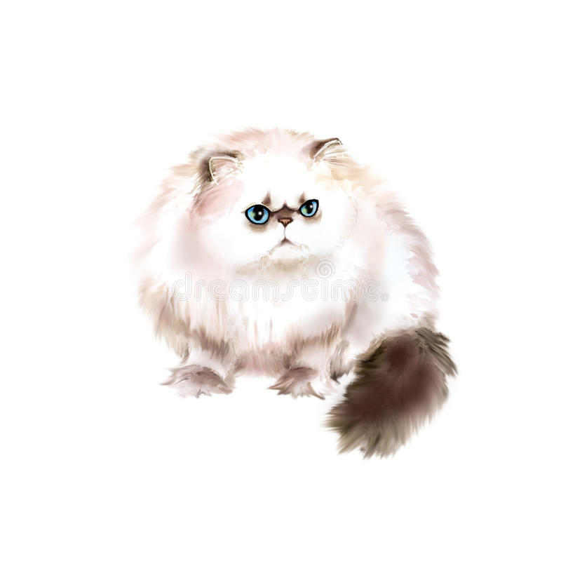 Ritratto dell'acquerello del gatto longhair himalayano di Colourpoint su fondo bianco Animale domestico domestico dolce disegnato immagine stock