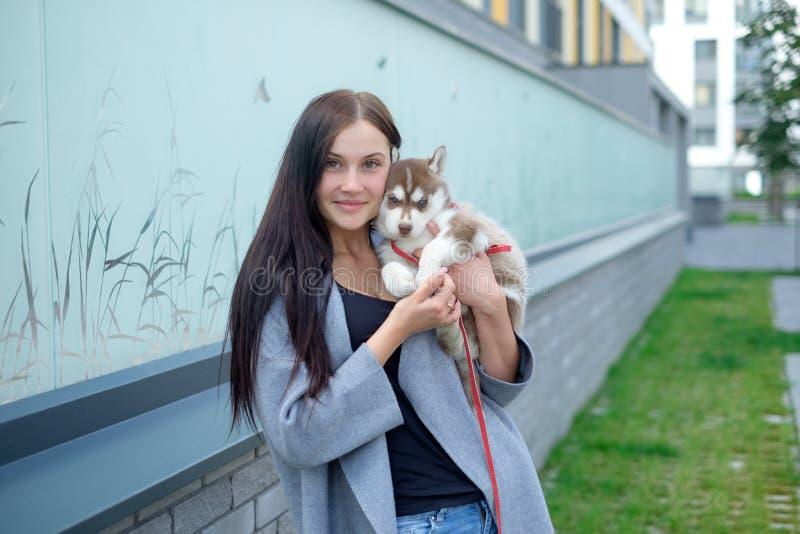 Ritratto dell'giovani donne con i cuccioli di un husky immagine stock