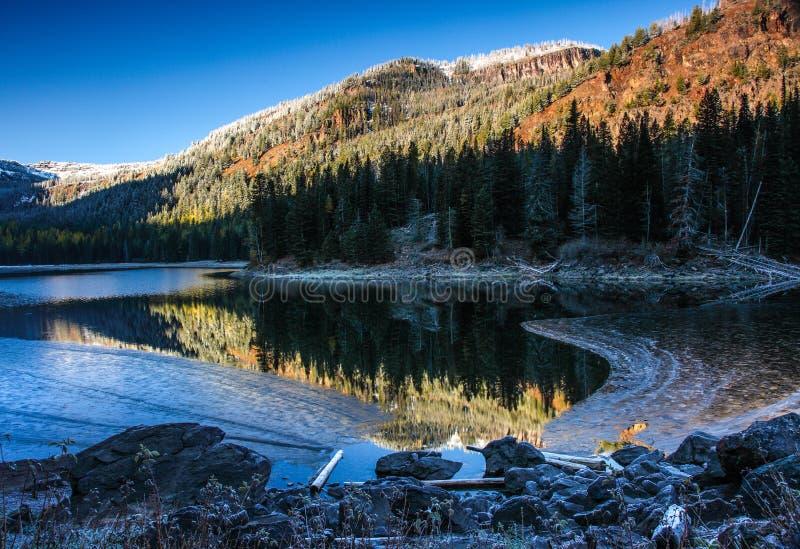 Ritratto dell'Oregon fotografie stock libere da diritti