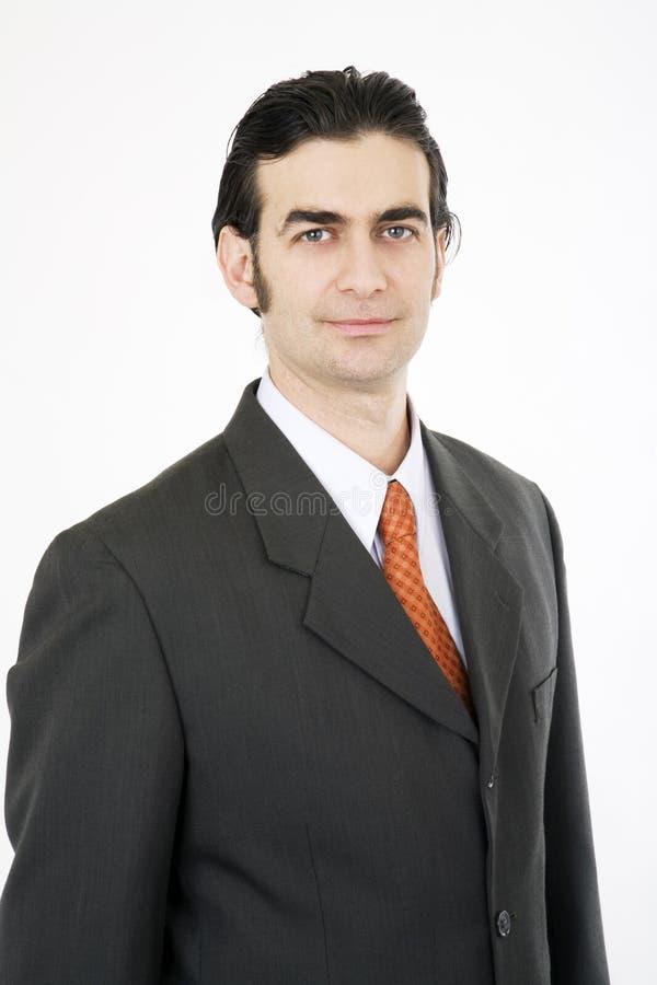 Ritratto dell'uomo d'affari fotografie stock