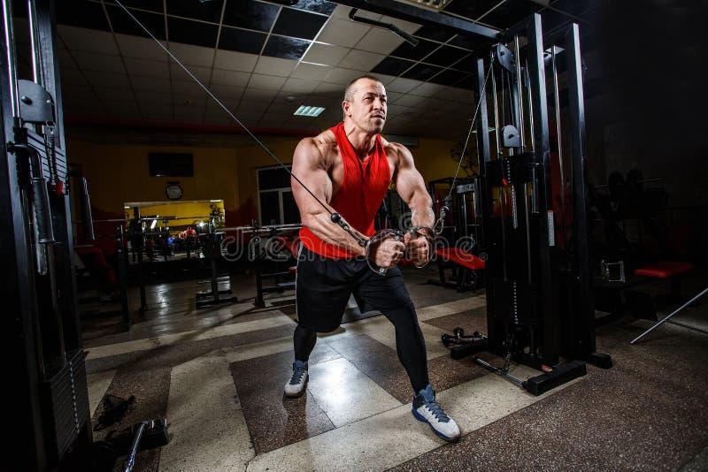 Ritratto dell'uomo del muscolo che fa gli esercizi nella palestra Mette in mostra i wallpapes fotografie stock