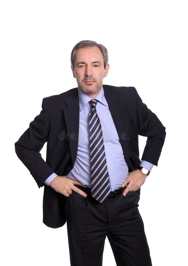 Ritratto dell'uomo di affari immagini stock