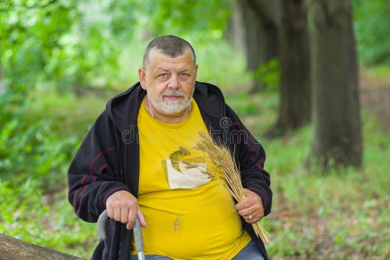 Ritratto dell'uomo senior sotto l'ombra dell'albero fotografie stock