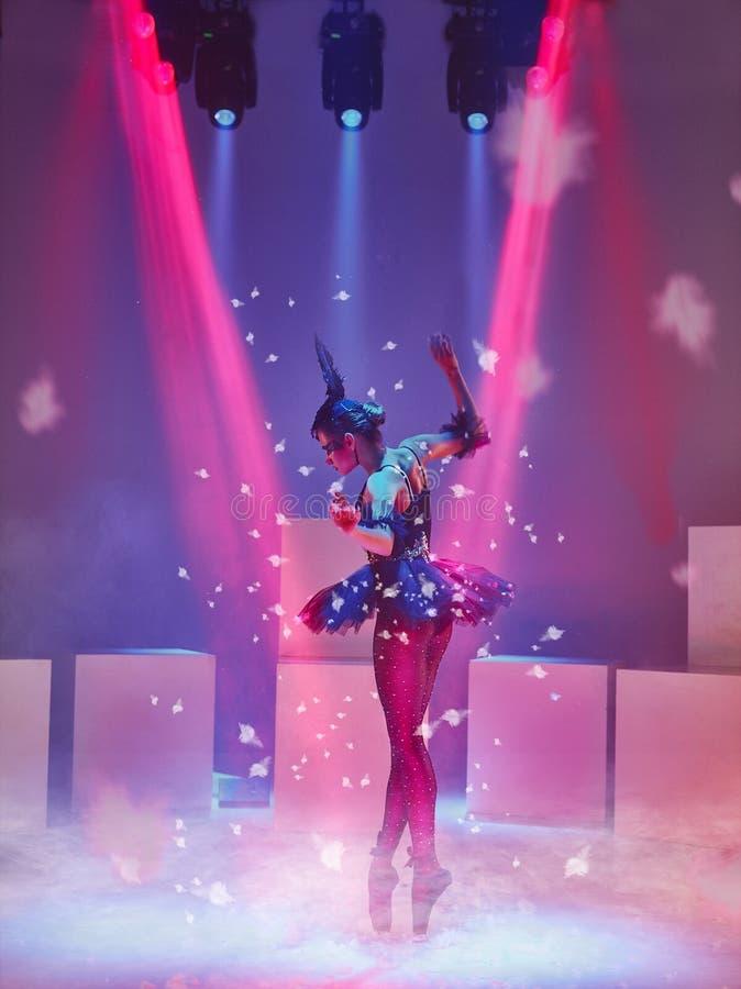 Ritratto della ballerina nel ruolo di un cigno nero immagine stock libera da diritti