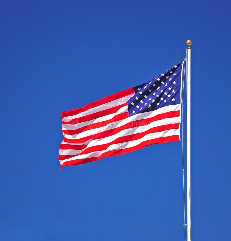 Ritratto della bandierina degli Stati Uniti immagini stock