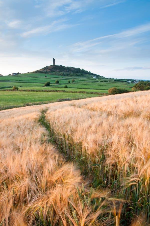 Ritratto della collina del castello fotografia stock libera da diritti