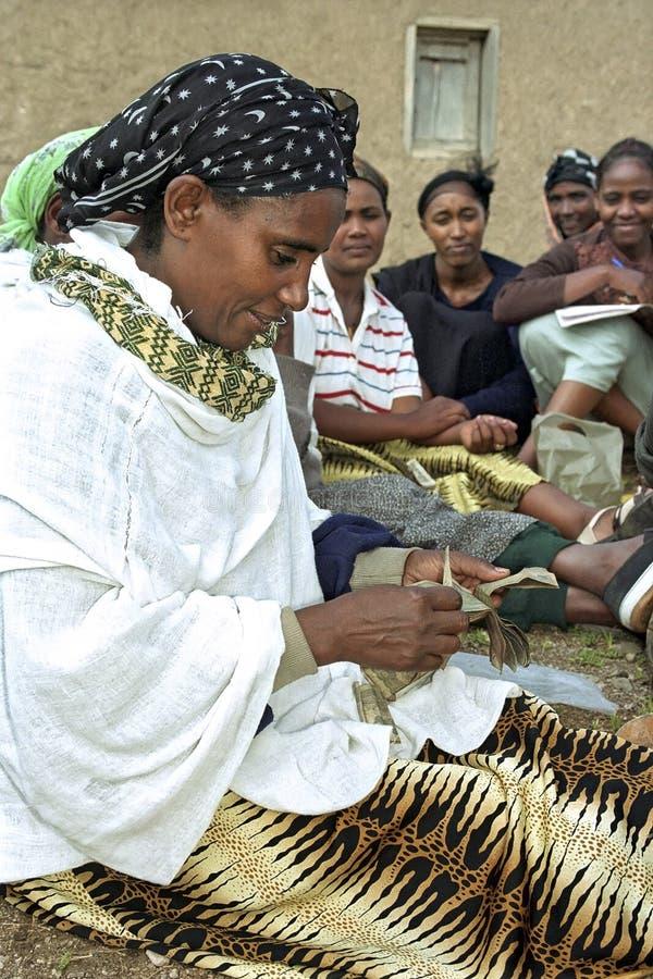 Ritratto della donna dell'associazione di microcredito immagini stock libere da diritti
