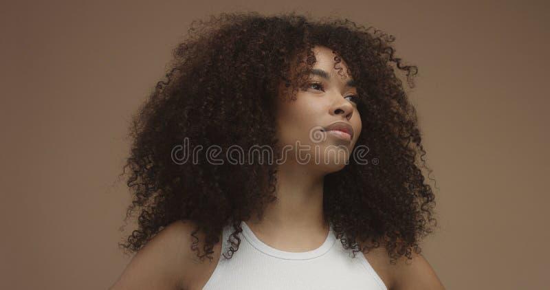 Ritratto della donna di colore della corsa mista con i grandi capelli di afro, capelli ricci fotografia stock