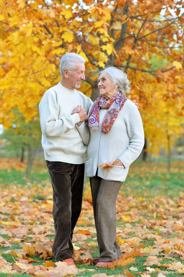 Ritratto della donna e dell'uomo senior felici in parco immagini stock