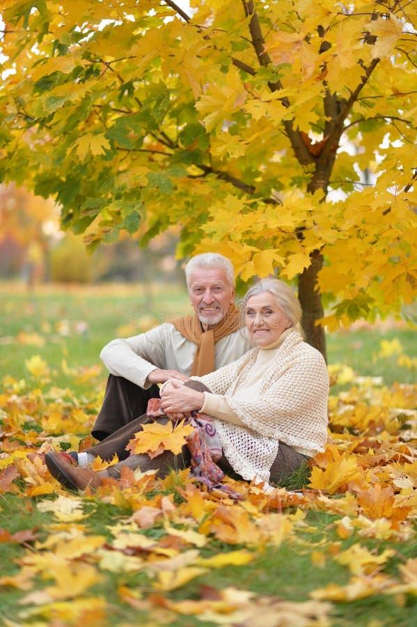 Ritratto della donna e dell'uomo senior felici in parco fotografie stock
