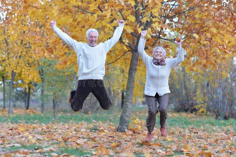 Ritratto della donna e dell'uomo senior felici in parco fotografia stock