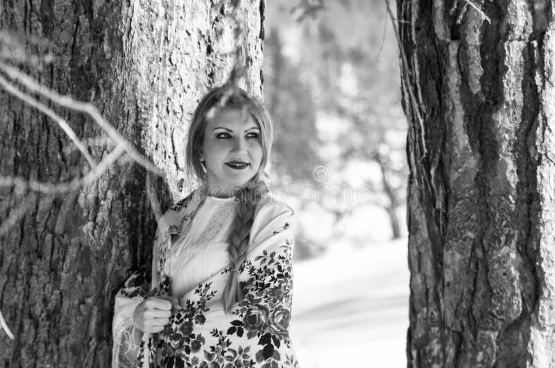 Ritratto della donna nella neve immagine stock