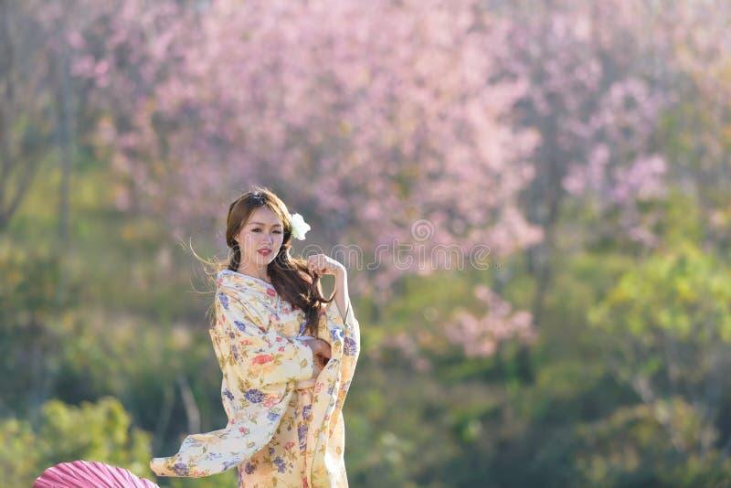 Ritratto della donna tradizionale asiatica fotografia stock