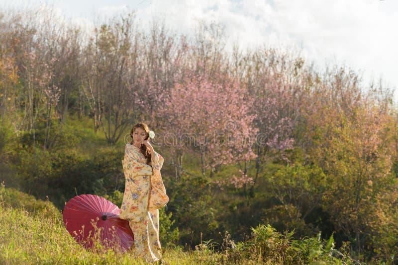 Ritratto della donna tradizionale asiatica immagini stock